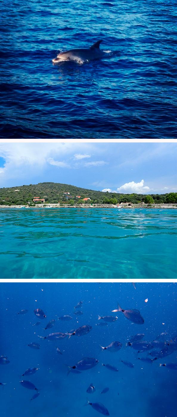 Mónica_López_Croacia_Collage_5